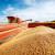 HPK: Kuna za kilogram pšenice je ispod očekivanja i realnih troškova