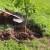 Zasadili 9 hiljada sadnica za jedan dan širom BiH