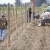 Prije sadnje voća na jesen uradite analizu tla i pravilno đubrenje