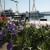 Cvjetno proljeće u Crikvenici okupilo brojne izlagače, ali i kupce!