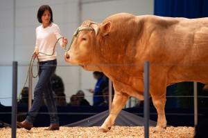 Vodeći sajam za animalnu proizvodnju - EuroTier u Hanoveru