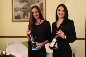 Festival vina, prateće opreme i gastronomije - VinoSalis 2019