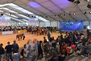 Posetite evropsku izložbu stoke broj jedan u gradu Klermont Ferand
