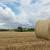Život somborskih salašara težak, ali prepun čari