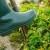 Koji su problemi u razvoju organske poljoprivrede?