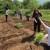 Uz permakulturu i sklad i mir