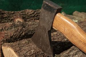 Pirot: Smanjen broj šumskih krađa, ali građani i dalje u problemu