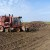 Proizvođačima šećerne repe zbog otežanih uvjeta poslovanja 30 milijuna kuna potpore