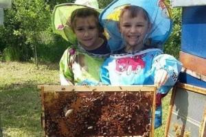 Mia i Filip - najmlađi pčelari u regionu