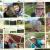 10 naj selfija u drugom krugu vrućeg izbora #mojepovrće