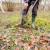 Što i kako sijati u jesen, zašto je jesenja sadnja voćaka bolja od proljetne - zanimalo vas je proteklog septembra