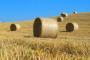 Zaprimanje zahtjeva za izravna plaćanje putem AGRONET-a