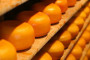 Izgradnja opremanje i uređenje mini sirane pod posebnim uvjetima