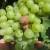 Zaštitite grozdove od sive truleži