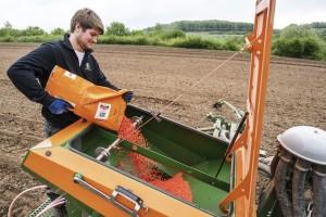 Koje su radnje u polju nužne nakon nedavnog snijega i kada u sjetvu kukuruza?