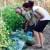 Koja su hraniva biljci potrebna? Što su makro i mikroelementi?