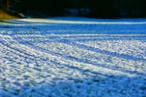 Stiže sneg!