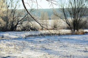 Biće uslova za pojavu snega i u nižim predelima