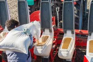 Kreće sjetva soje - pripremite tlo na vrijeme