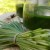 Zeleni sok od žita nije lek, ali doprinosi balansu organizma