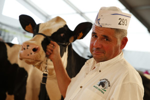 Vodeći sajam stočarstva, Sommet de l