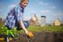 Gdje u RH nabaviti ekološki uzgojeno sjeme?