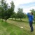 Vojvođani i Slavonci zajedno u projektu očuvanja starih sorti voća