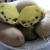 Opasna štetočina uništava zasade krompira