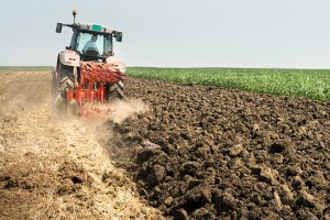 Grad Užice raspisuje konkurs za subvencije za poljoprivrednike