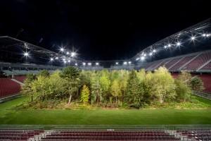 Šuma izrasla na stadionu!? To nam je budućnost?