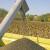 Poljoprivrednici se nadaju da će otkupna cena soje biti 50, a suncokreta 40 dinara