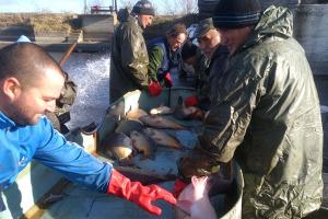 Ribnjak u Sutjesci  - jedan od lidera ribarstva