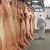 Gradi se najveća europska klaonica svinja