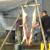 Sremski svinjokolj za razvoj seoskog turizma