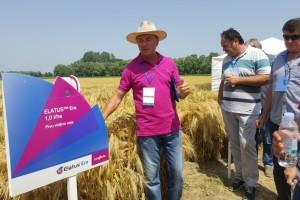 Zahvaljujući ELATUS Eri - novom najmoćnijem oružju u zaštiti od bolesti, polja pšenice i ječma još se zelenila u Vaškoj