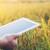 Prodaja poljoprivrednih proizvoda putem interneta je budućnost?