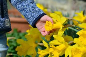 Terapijski vrtovi kao lijek