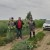 Timac Agro na terenu: Primjenom gnojiva s većom iskoristivosti do boljih rezultata OPG-ova