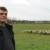 Od ličkog janjeta je i vuna slatka, a zasluge zaštiti idu Udruzi uzgajivača ovaca i Tomislavu Rukavini