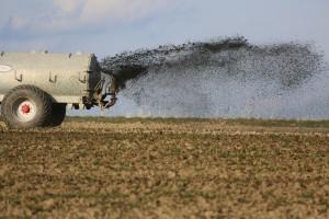 Korištenje mulja u poljoprivredi ima štetne posljedice?