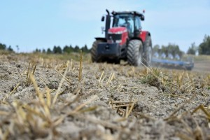 Kakve je posledice ostavila sušna jesen na evropskim ozimim usevima?