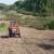 Obezbjeđen sjetveni materijal za 824 poljoprivrednika