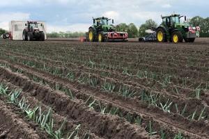 Ljudski rad sveden na minimum, na 12 hiljada hektara - osam radnika?