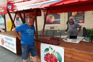 Zlatan Kljaković Gašpić: Zagrebačka trešnja na udaru globalne klime i uvoznog lobija