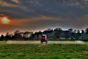 Korov otporan na herbicide? Što učiniti?