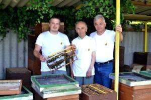 Vrhunske pčelinje matice, fascinantna su bića koja na svojoj farmi uzgaja Marin Kovačić, treća generacija pčelara u obitelji