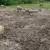Raste broj turopoljskih svinja, u planu je i gradnja pogona za preradu
