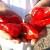 Samo u Beloj Palanci uspeva paprika vrtka koja se uvija prilikom sušenja