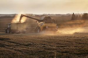 Evropska unija: Proizvodnja uljarica u porastu ove sezone, ali se sljedeće očekuje pad potrošnje