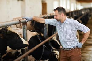 Javni poziv: 1.750.000 KM za poljoprivredna gazdinstva